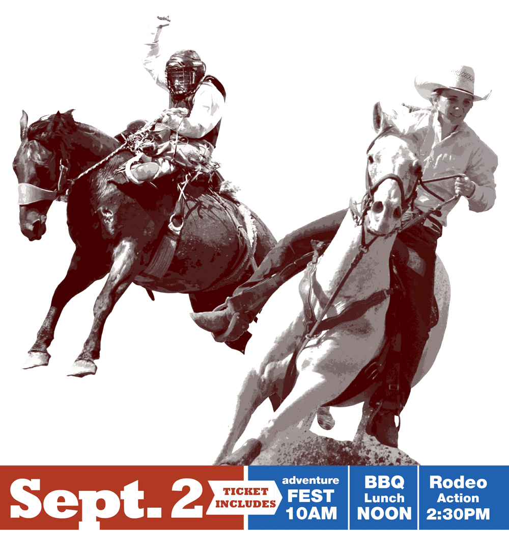 Boys Ranch Rodeo 2016 image