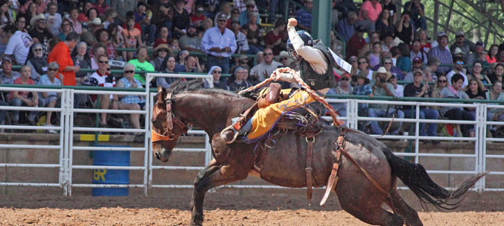 Boys Ranch youth to compete in Junior National Finals Rodeo in Las Vegas