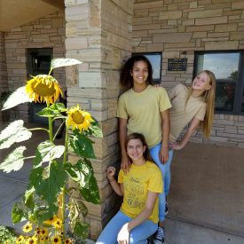 Sunflowers remind Romersi home residents of special donor