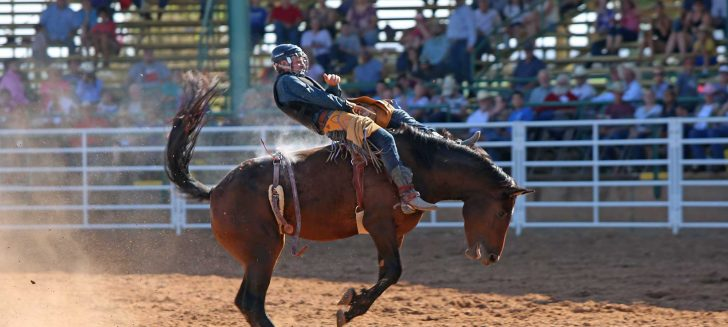 75th Annual Boys Ranch Rodeo one for the history books